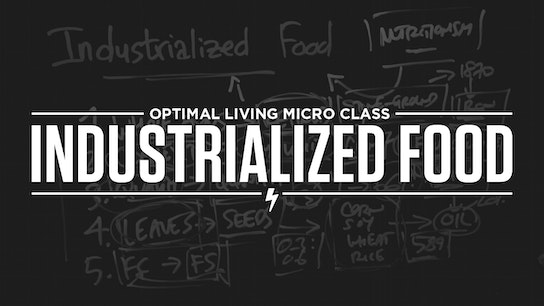 Industrialized Food Micro Class Cover