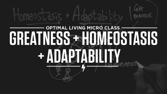 Greatness + Homeostasis + Adaptability Micro Class Cover