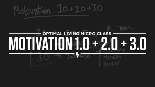 Motivation 1.0 + 2.0 + 3.0 Micro Class Cover