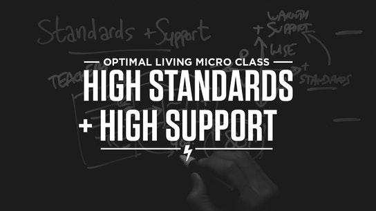 High Standards + High Support Micro Class Cover