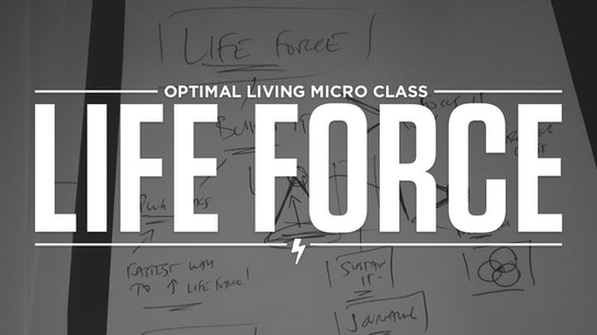 Life Force Micro Class Cover